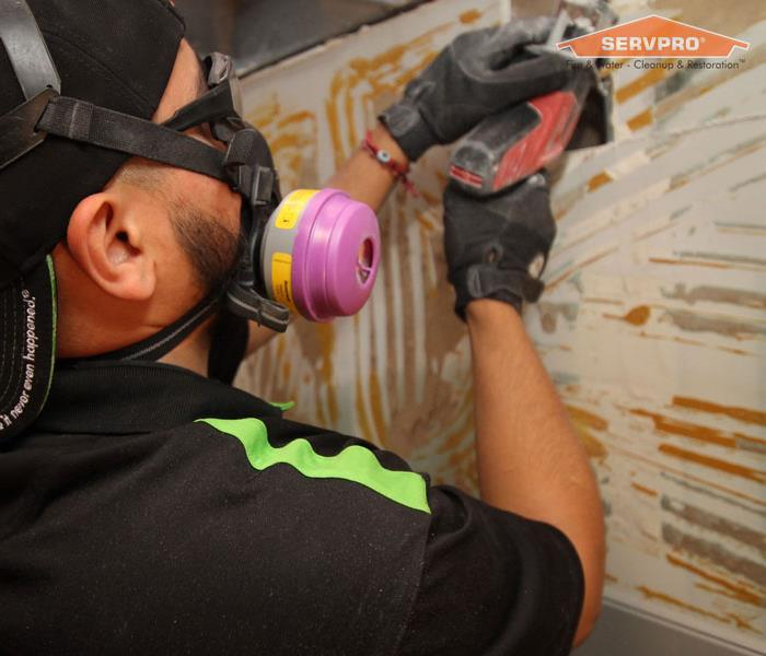 Commercial Does Your Las Vegas Home Have A Mold Problem?